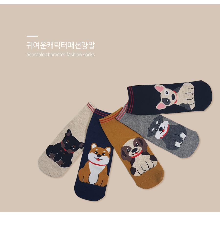 190904_doggy_socks_01.jpg
