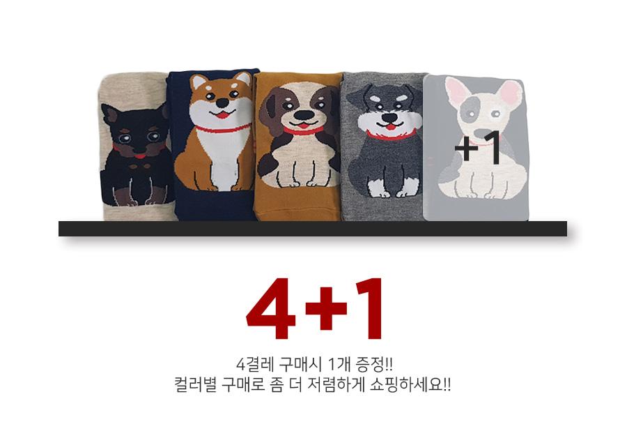 190904_doggy_socks_02.jpg